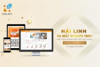 Hailinh.vn - website thương mại điện tử ngành vật liệu xây dựng đầu tiên tại Việt Nam
